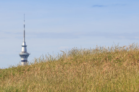 eden: The view point from Mount Eden and blurred background of Auckland Skyline.