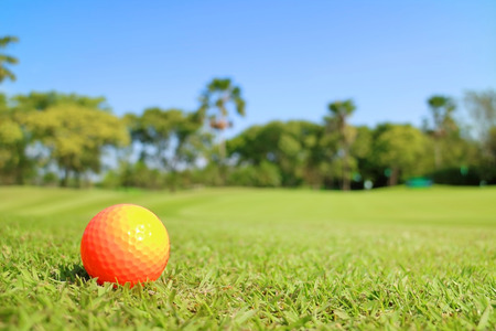 t off: Golf ball on green with blurred beautiful nature scene background.