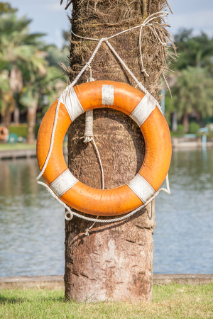 safety buoy: Orange life buoy hanging on tree nearby the lake, for safety and rescue. Stock Photo