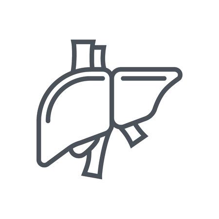 higado humano: icono de hígado compatible para información de gráficos, páginas web y medios impresos e interfaces. Línea de iconos de vectores. Vectores
