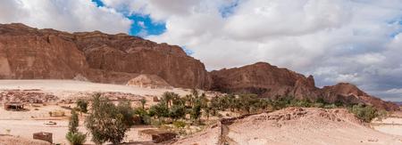 sinai desert: Oasis in the Sinai desert. Dahab. Egypt