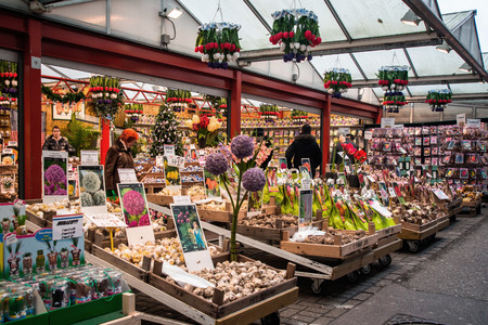 flower market: AMSTERDAM, HOLLAND - DECEMBER, 30: Amsterdam flower market (Bloemenmarkt). the worlds only floating flower market and one of the main attractions of Amsterdam on 30 december 2012.