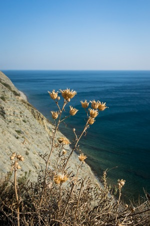 krasnodar region: Beautiful view of the Black sea. Near the Village Durso. Krasnodar region. Russia.