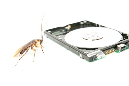 attacked: Cockroach and hard disk drive to present about computer attacked from virus