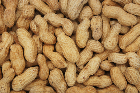 goober peas: Close-up and detail of peanut background