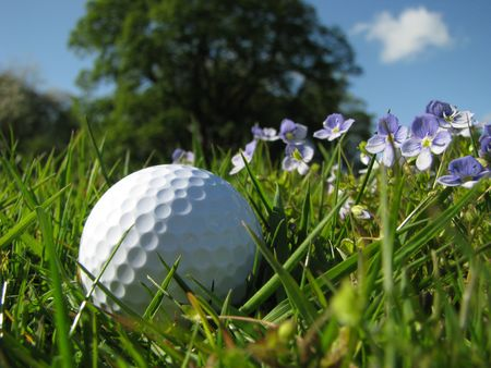 long range: A golf ball in the rough with flowers