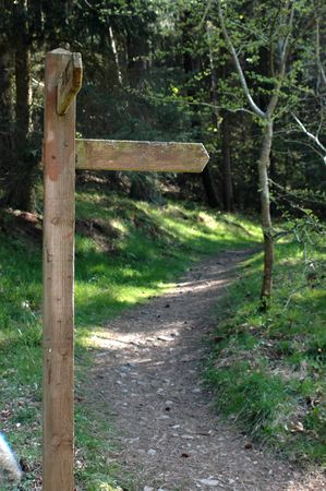 A blank sign (for your text) on a hiking trail