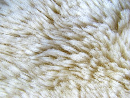 A background texture of a woolly sheepskin rug photo