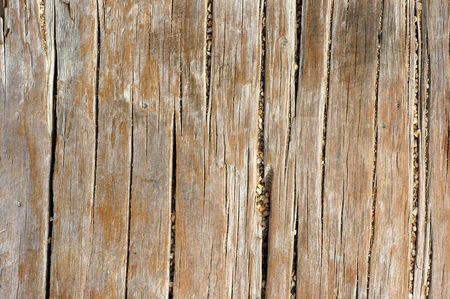 Abstract Background Texture Of Weathered Wood Near A Beach photo