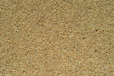 High Resolution Background Texture Of Wet Sand
