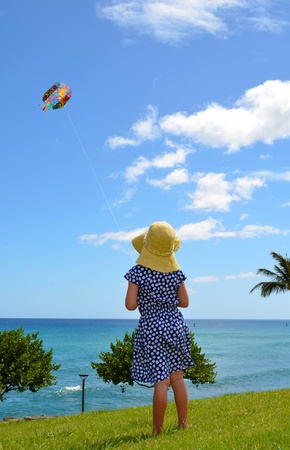 A Child Flying A Kite In A Park Stock Photo - 10282914