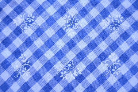 Pretty Blue Checked Dress Material With Flowers photo