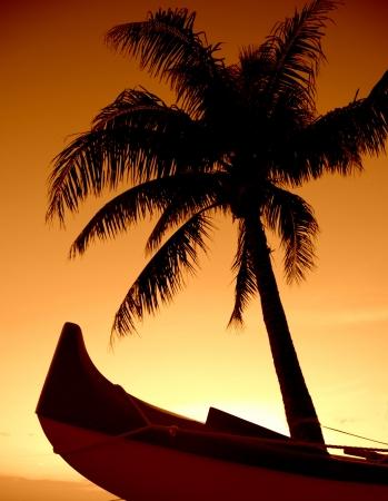piragua: Una palmera y Outrigger Canoe Conjunto Contra Un Hawaiian Sunset Foto de archivo