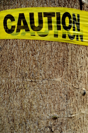 Conceptual Environmental Image Of A Yellow Caution Sign On A Tree Stock Photo - 16158389