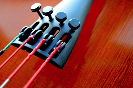 Musical Close-Up Of Strings And Tailpiece Of A Cello With Copy Space photo
