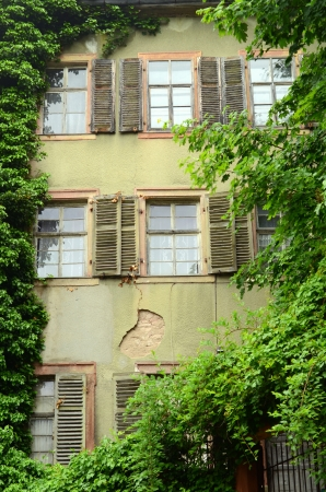 An Overgrown Derelict House In Europe With Shutters photo