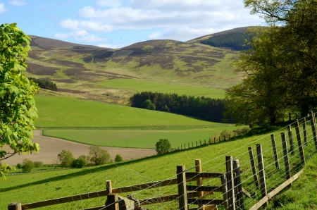 Landscape of Hills and Valley In Agricultural Scottish Borders Stock Photo
