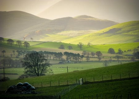 english countryside: Low WInter Sun On Rural Hills In The Scottish Borders