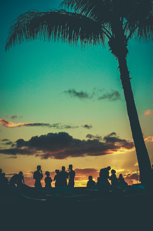 party silhouettes: Young People At Retro Styled Hawaiian Sunset Beach Party Stock Photo