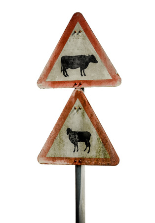 sheep road sign: Grungy UK Warning Sign For Cattle And Sheep Stock Photo