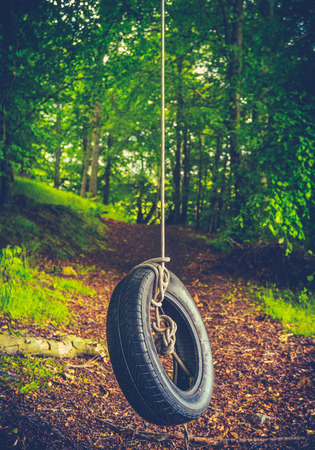 play the old park: Retro Style Childhood Image Of A Tyre Swing Deep In A Forest Stock Photo