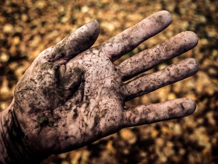 terreno: La mano sporca di un agricoltore o giardiniere Outside In autunno