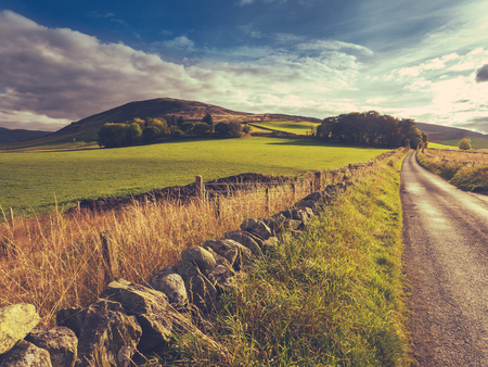 country road: Country Road Or Lane And Dry Stone Wall Through Scottish Rural Lanscape At Dusk
