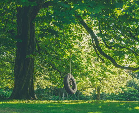 Childhood Nostalgia Image Of a Tire Swing Hanging From A Tree On A Summer's Afternoon 스톡 콘텐츠