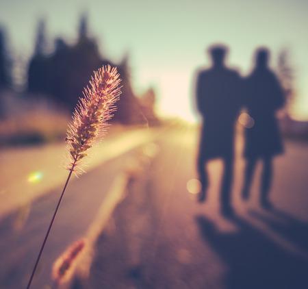 caminando: Vintage retro romántico Soft Focus mayor de los pares que recorre en la puesta del sol en verano