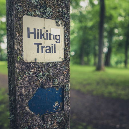 wooden trail sign: Rustic Hiking Trail Sign On A Wooden Post In A Forest