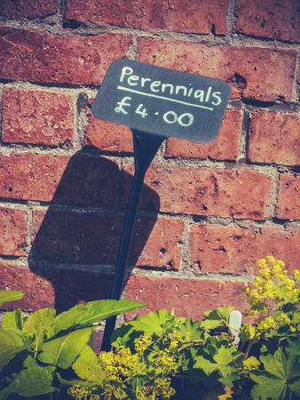 perennials: Sign For A Perennials Plant Sale At A UK Farmers Market Stock Photo