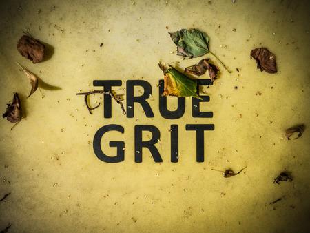 gritting: Conceptual Image Of True Grit Written On A Grit Bin