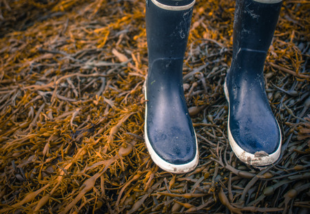 Retro Style Photo Of Wet Rubber Boots Walking On Seaweed On A Beach With Copy Space