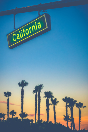 A California Street Sign Over Palm Trees At Sunset With Copy Space