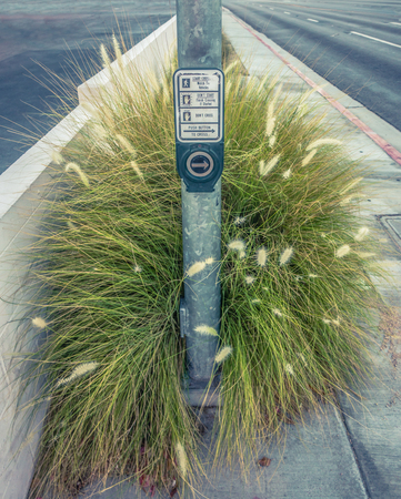 Weeds Growing Around A Crosswalk Button In A Deserted Desert Town In The USA