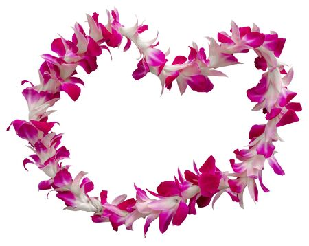 Isolated Hawaiian Welcome Lei Necklace On A White Background