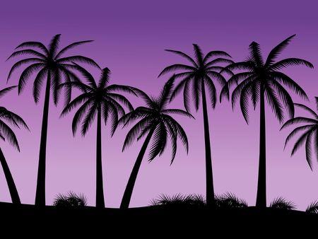 nightly: Palms on a background nightly sky
