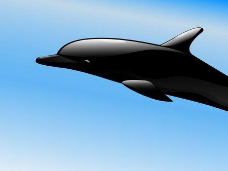 Black dolphin photo