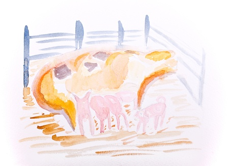 piglets: Pig with piglets water colour by Kay Gale