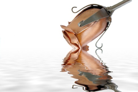 forged: Steel rose reflecting in water with a small ripple