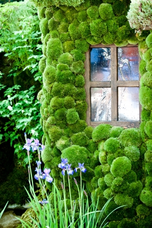 House with moss walls close up