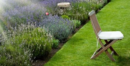 jardinero: Jardín de lavanda en la luz de la mañana con la única silla