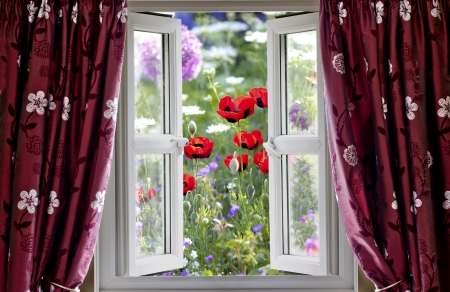 Looking through an open window onto wild flower garden in summer photo