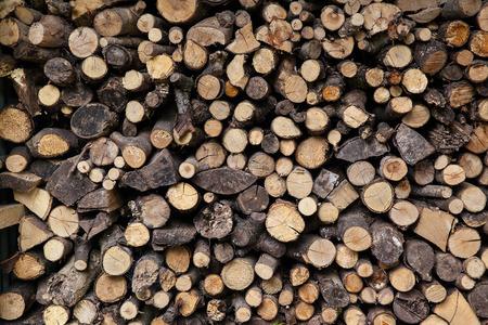 sawn: Big pile of sawn logs