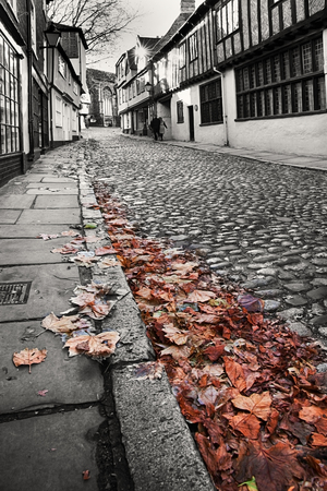 kerb: Old cobbled street in black and white with fallen leaves in colour. viewed from low angle close to the kerb Stock Photo