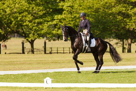 HOUGHTON, NORFOLKENGLAND - May 25th 2017: Houghton International Horse Trials 2017 Including cross country, eventing, show jumping and dressage at the top level