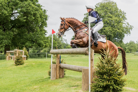 gelding: HOUGHTON, NORFOLKENGLAND - May 28th 2017: Houghton International Horse Trials 2017 Flora Harris riding Billy Bandit. Including cross country, eventing, show jumping and dressage at the top level Editorial