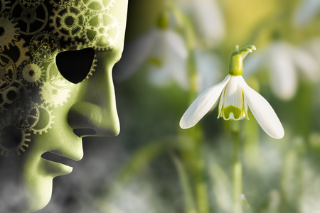 Working in harmony with nature concept. Mask face with mechanical cog brain looking onto a delicate snowdrop plant in a misty garden.