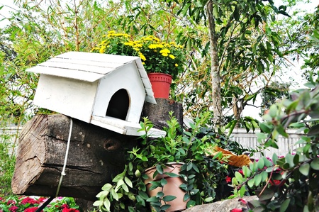 pigeon holes: The Pigeon Hole at Garden Landscape