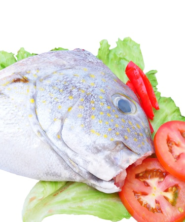 Fresh raw head fish ready to cook photo
